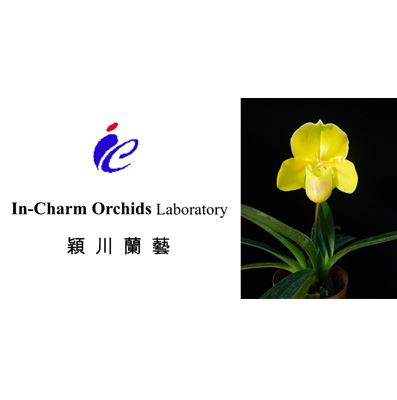 InCharm orchids