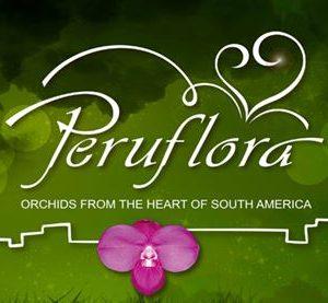 Peruflora orchids