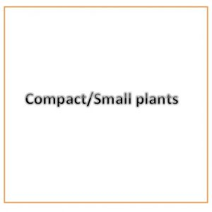 Compact/Small growing plants